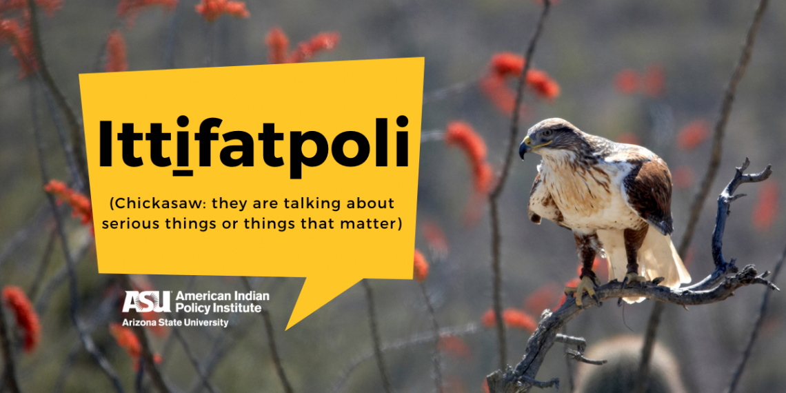 AIPI Blog Top Banner - Ittifatpoli - November 2020 - blog