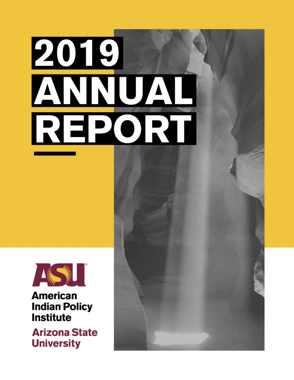 2019 Annual Report Cover Image